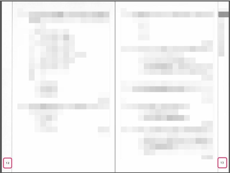 Adobe Acrobat Pro で見開きページのページ番号