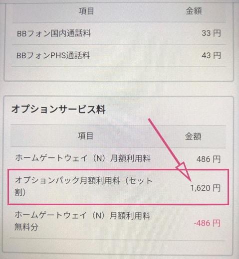 オプションパック月額使用料(セット割)